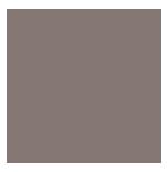 The Brady Collection Logo